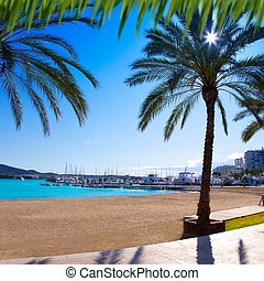 Ibiza Sant antoni de Portmany Abad beach with palm trees