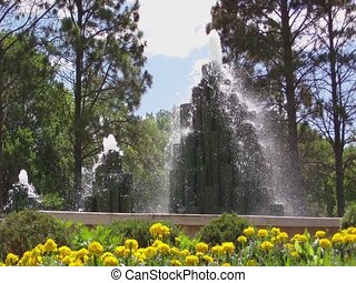 Wood Fountains with Yellow Flowers - Ground level shot of...