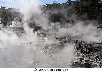 Rotorua - Volcanic mud boiling and steaming at Rotorua