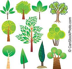 Tree samples - Samples of various tree species in various...