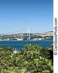 Istanbul - The Bosphorus Bridge behind green palm trees on a...