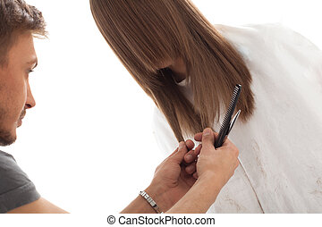 Professional hairdresser with long hair model, isolated on...