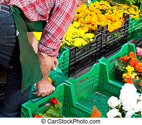Flowers at market stall - Market stall offering cut flowers....