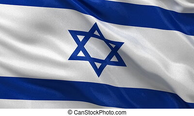 Seamless Isreali Flag loop - Flag of Israel waving in the...