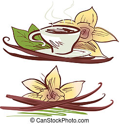 Vanilla Beans - Vanilla beans with flowers, leaves and cup