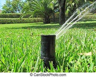 irrigação, sistema, jardim