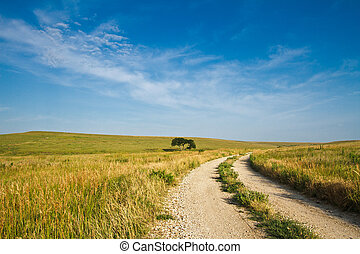 Flint Hills Gravel Road - A gravel road going through the...