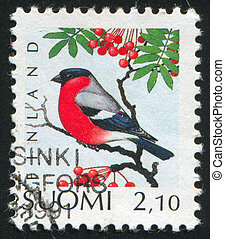 Common Bullfinch - FINLAND - CIRCA 1991: stamp printed by...