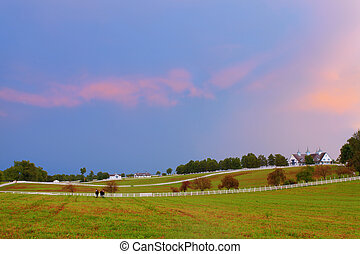 Evening at a horse farm