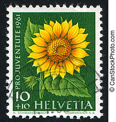 flower Sunflower - SWITZERLAND - CIRCA 1961: stamp printed...
