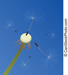vector dandelion seeds blown in the wind - vector...