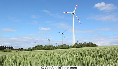 windmill in a wheat field - a windmill in a wheat field