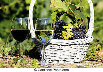 glasses of wine and grappes in basket in a field