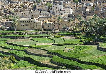 The village Bilad Sayt, sultanate Oman