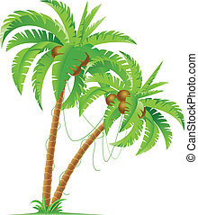 Palm tree - Two palm trees Illustration for design on white...