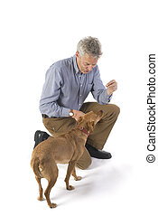 Training the dog - training the dog for obedience with...
