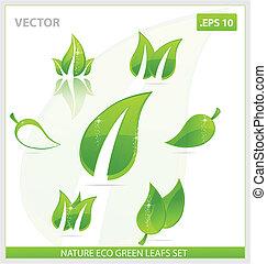 creative concept eco green leafs symbols set