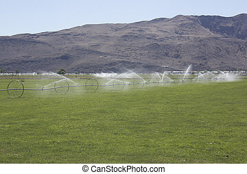 Agriculture Pasture Crop Irrigation - Large area of land...