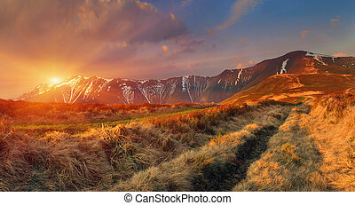 Spring landscape in the mountains. Sunrise