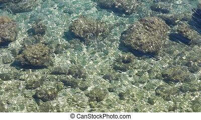Stobes under water