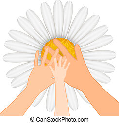 ands on chamomile - Family -Vector illustration of hands on...