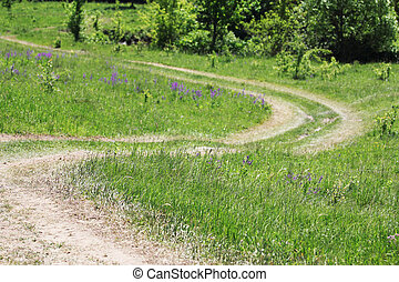 winding road in the nature