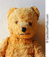 teddy bear portrait - half-length portrait photo of teddy...