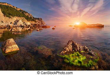 Beautiful summer landscape on the sea Sunset
