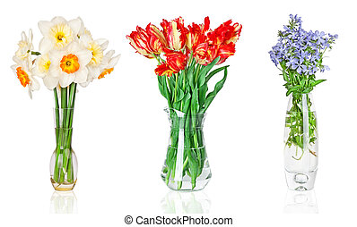 Beautiful flowers in vase isolated