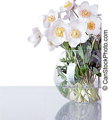 beautiful spring flowers jasmin in vase isolated on white