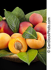 apricots and peaches - apricots and cherries with green...