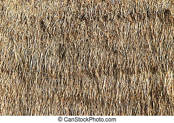 Thatched palm leaf roof - Part of thatched roof as...