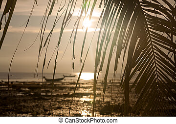 Sunset with boat and palm tree leaves