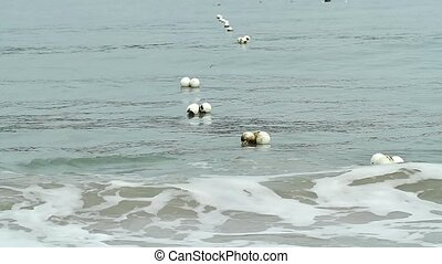 Safety net Buoy In Sea Water - safety net buoys in the sea...