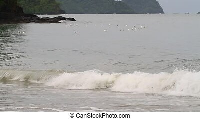 Wave and buoy - safety net buoys and wave off Pantai Tengah...