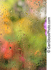 Abstract autumn background. - Close-up of small drops on...