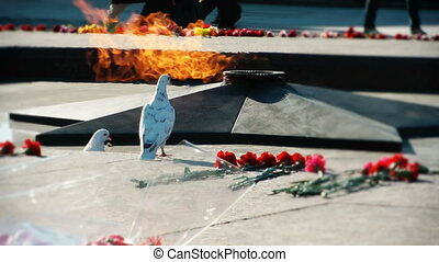 HD - Memorial flame