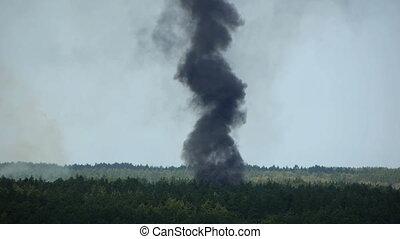 HD - Big smoke in the woods_scene2