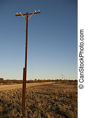 Power line outback Australia