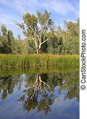 Lake in outback Australia