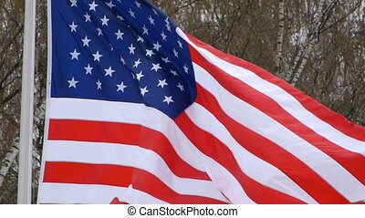 HD - USA Flag. Close-up