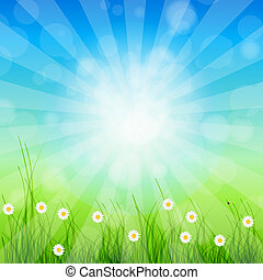 Summer Abstract Background with grass and chamomile against...