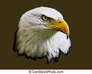 Graphical sketch of silhouette of head predator eagle -...