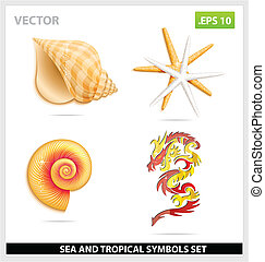 yellow sea shell and dragon symbols set isolated