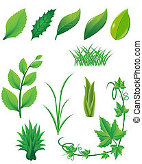 icono, Conjunto, verde, hojas, plantas