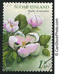 Apple Blossom - FINLAND - CIRCA 2005: stamp printed by...