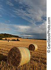 Straw bales on farmland - Agricultural landscape of hay...