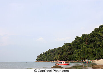 National Park - Penang - National Park on Penang Island,...