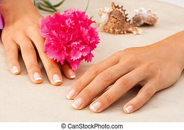 Female hands with flower.