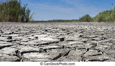Dryness - Surface of an arid lake. Broken texture of dry...